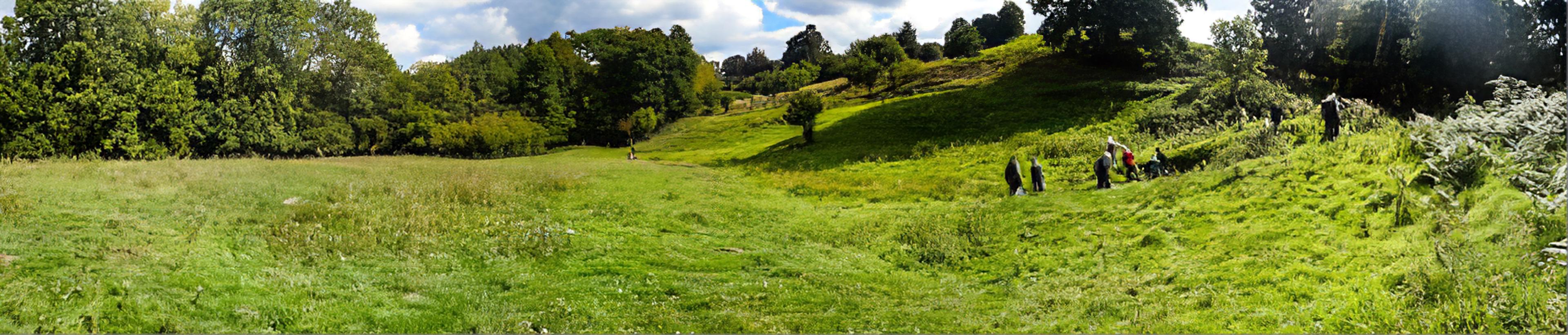 Snuffmill wet meadow