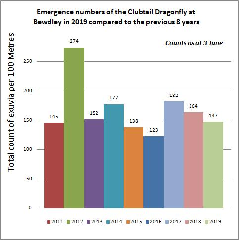 Emergence numbers of Cludtail Dragonfly - Mike Averill